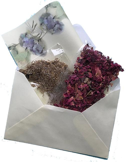 seed-rose-petals